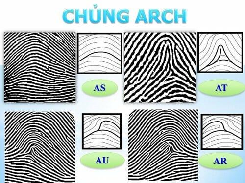 Tìm hiểu tính cách người mang vân tay chủng Arch qua sinh trắc vân tay.