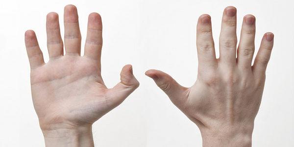 Làm sinh trắc sẽ lấy dấu vân tay ngón nào